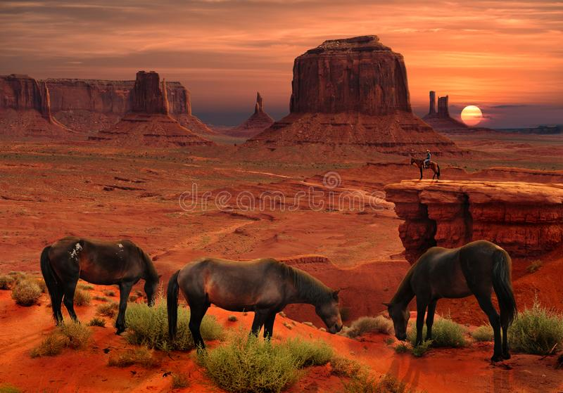 Horses at John Ford`s Point Overlook in Monument Valley Tribal Park, Arizona USA. Horses at John Ford`s Point Overlook at beautiful sunset in Monument Valley stock photo