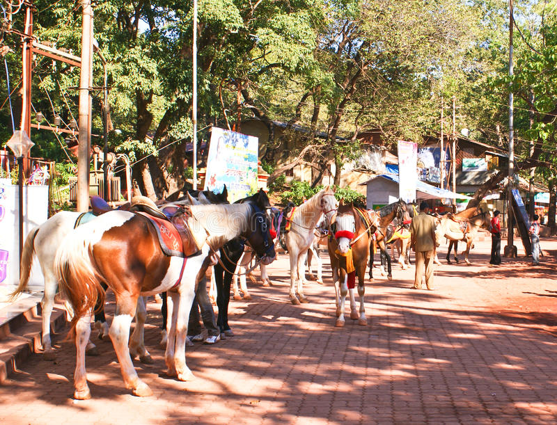 Download Horses In Matheran , India Editorial Stock Photo - Image: 17936508