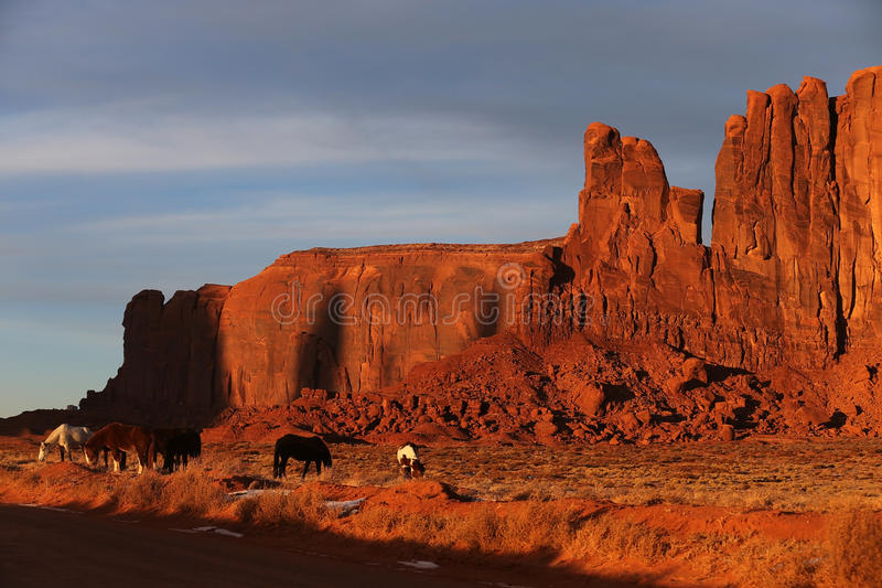 Download Horses of Monument Valley stock image. Image of horizon - 28647943