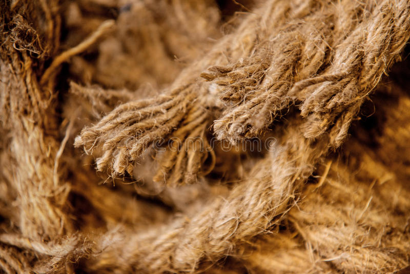 Horses parted hemp rope twine. Close-up stock images