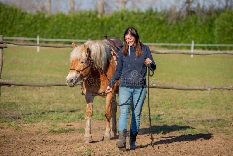 Horses run free. In the prairie stock image
