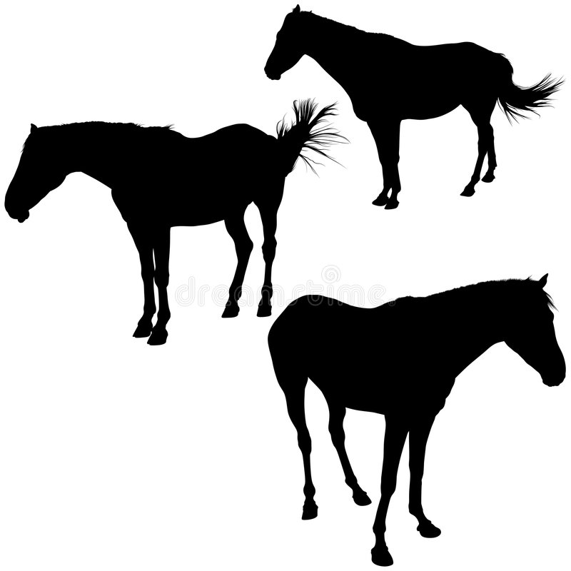 Download Horses Silhouettes stock vector. Illustration of colt - 6058085