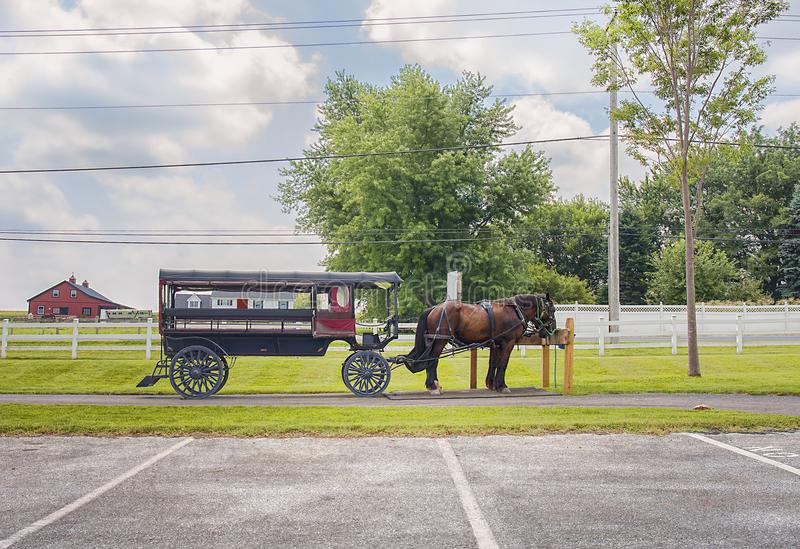 Horses With Wagon in Amish Country. Horses and a wagon in Amish country with a farm in the far background stock images
