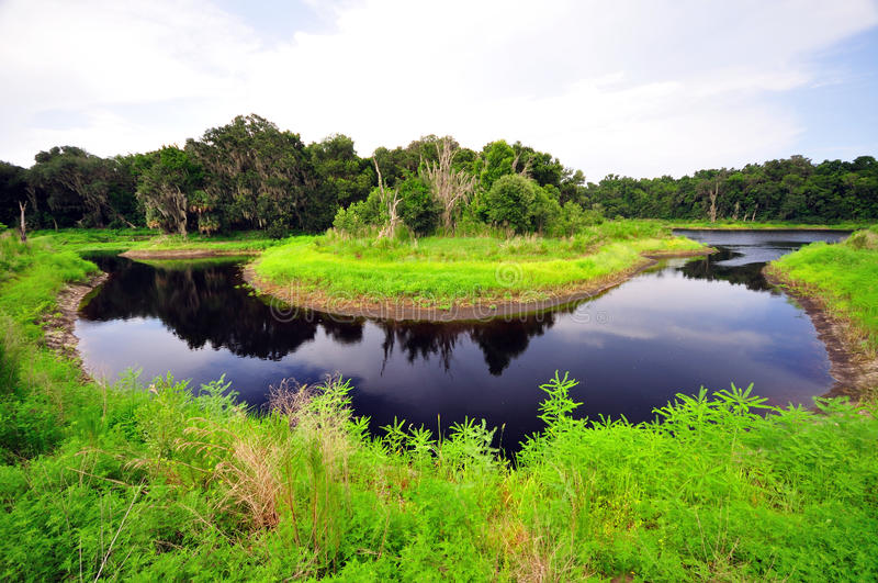 Horseshoe River Bend at Paynes Prairie stock images