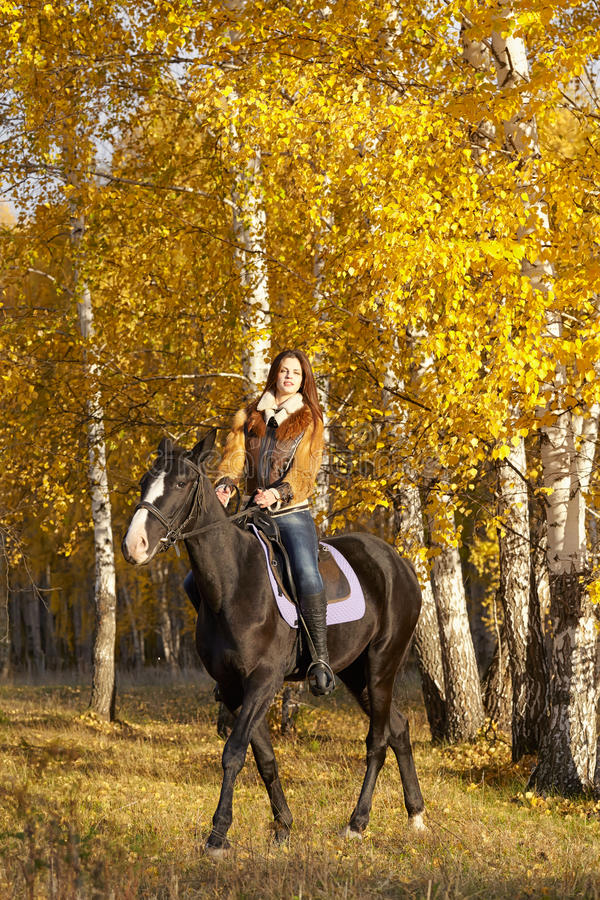 Horsewoman. Portrait of a pretty young woman with a black horse riding autumn day stock images