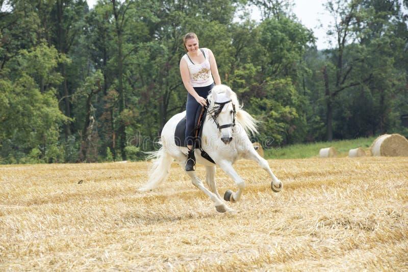 horsewoman royaltyfria bilder