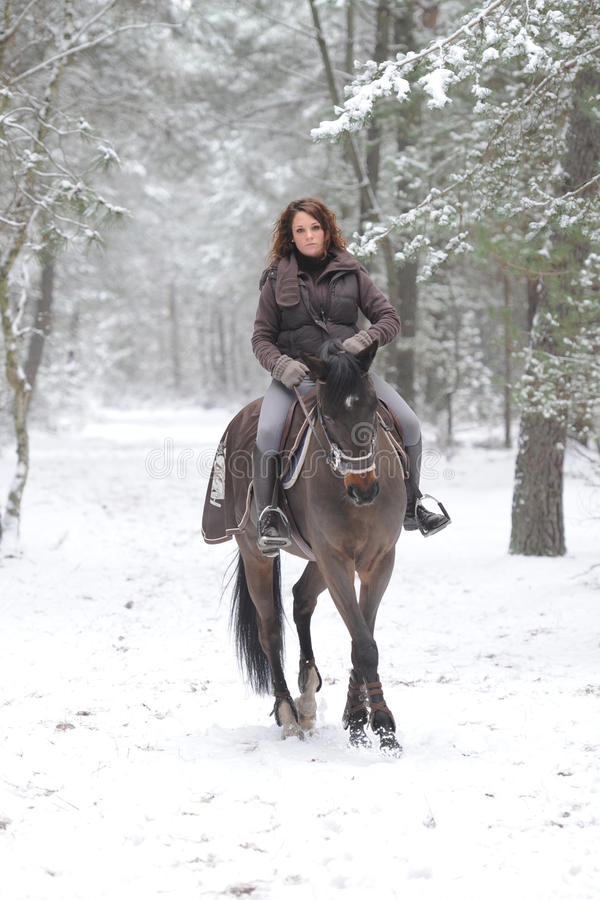 horsewoman royaltyfri foto