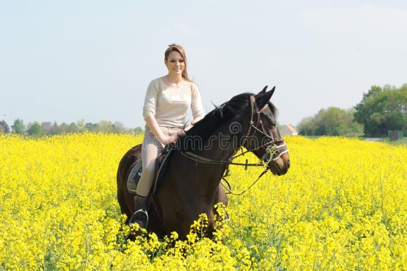 horsewoman foto de archivo