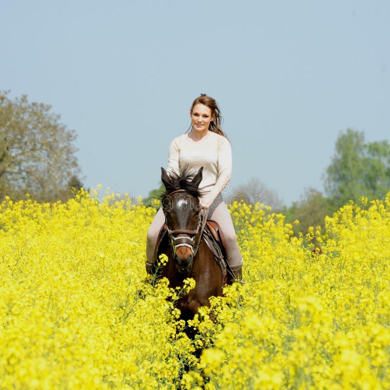 horsewoman imagenes de archivo