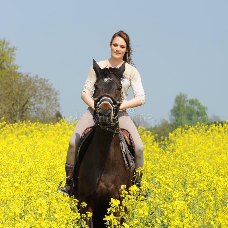 horsewoman foto de archivo libre de regalías