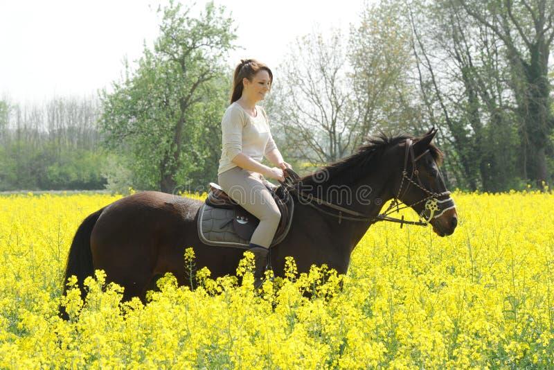 horsewoman fotografía de archivo