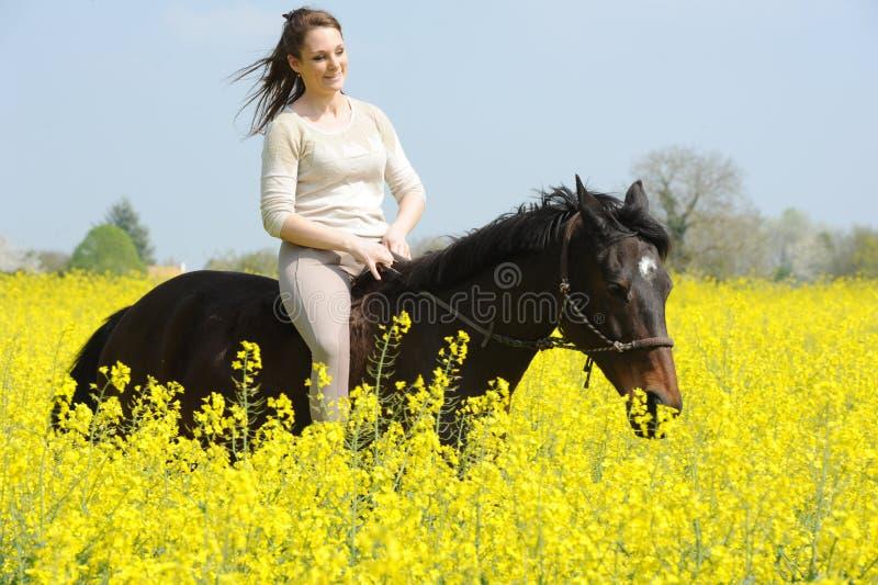 horsewoman arkivfoto