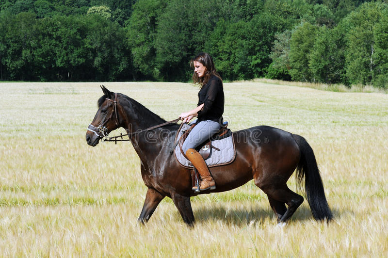 horsewoman arkivbild