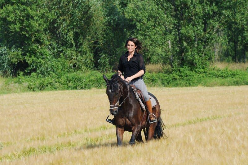 horsewoman fotografía de archivo libre de regalías