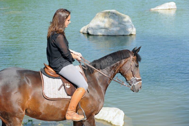 horsewoman royaltyfri bild