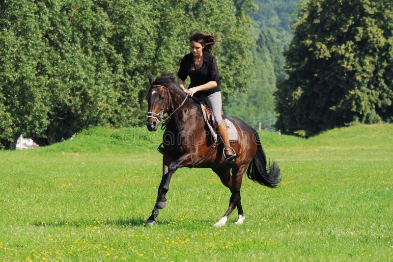 horsewoman arkivfoton