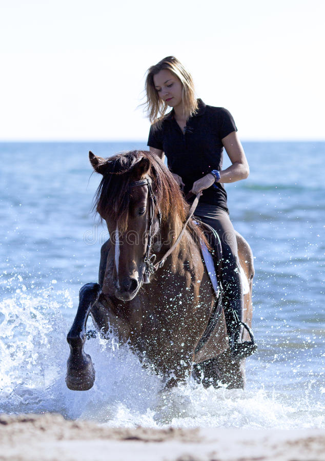 Horsewoman on the beach. Horsewoman and her horse on the beach royalty free stock photos