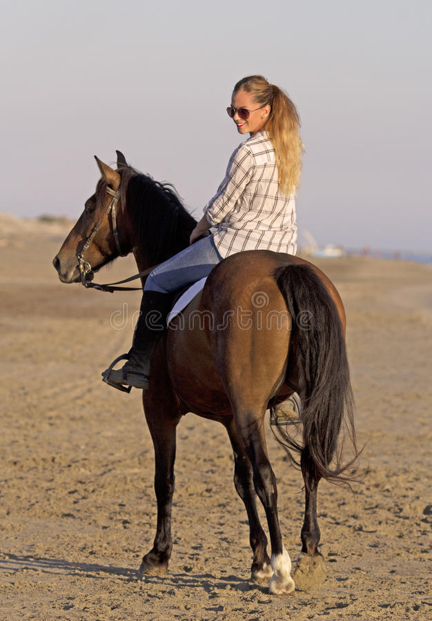 Horsewoman on the beach stock images