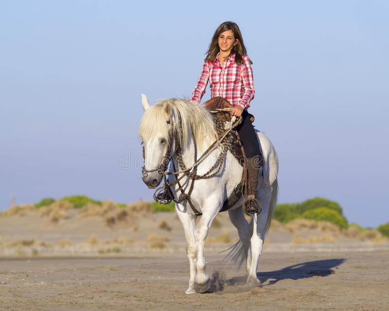 Horsewoman on the beach stock image