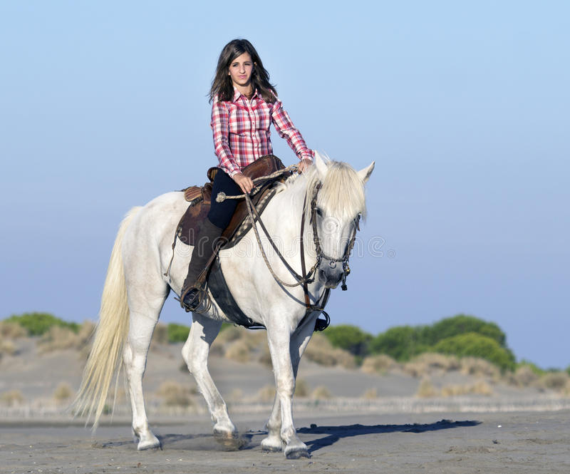 Horsewoman on the beach royalty free stock image
