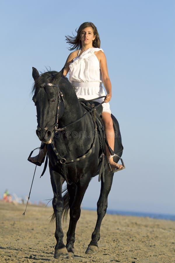 Horsewoman on the beach stock photos