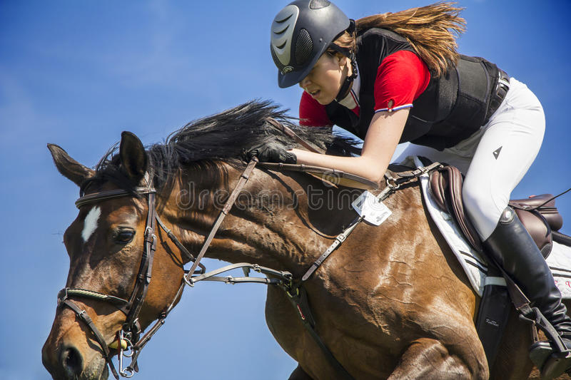 Horsewoman on brown horse in jump over a hurdle stock images