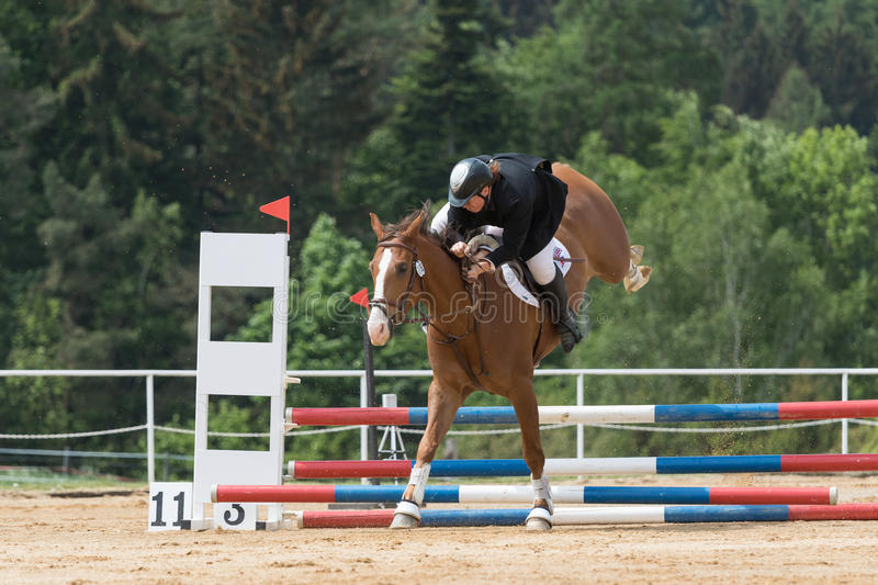 Horsewoman is falling from a brown horse. SVEBOHOV, CZECH REPUBLIC - MAY 23: Horsewoman is falling from a brown horse after the flashover an obstacle at Summer royalty free stock photos