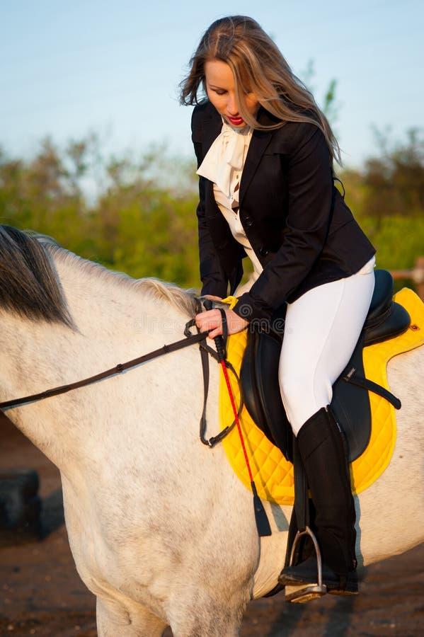 Horsewoman at hippodrome and blue sky stock photos