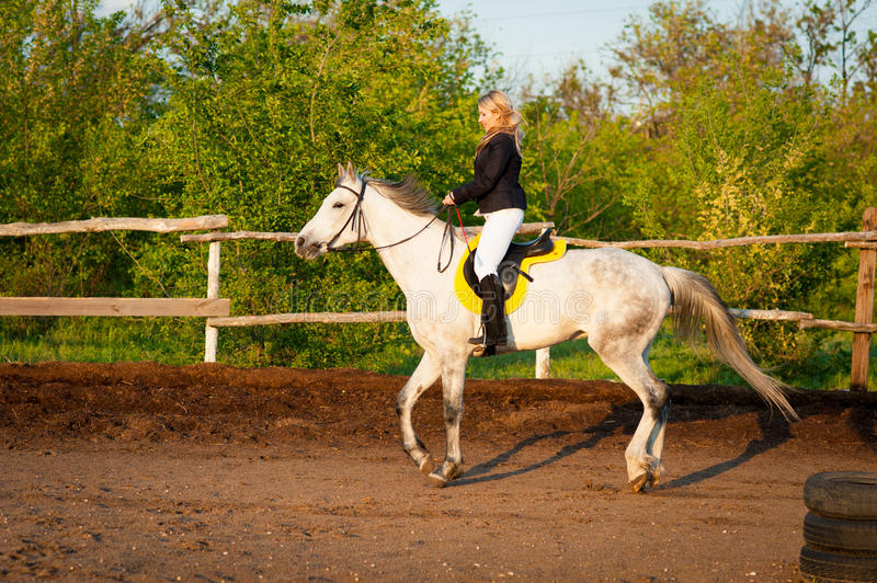 Horsewoman at hippodrome and blue sky royalty free stock photo