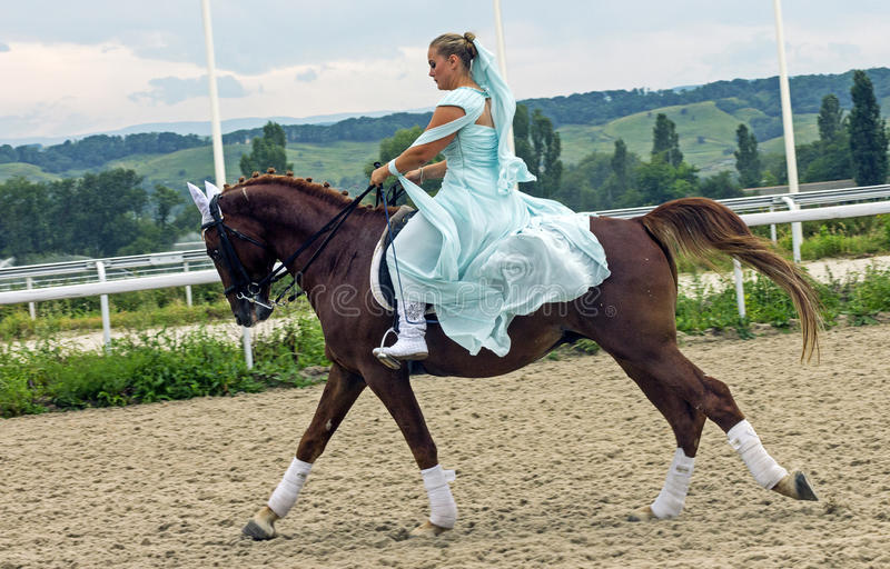 Horsewoman on horse royalty free stock images