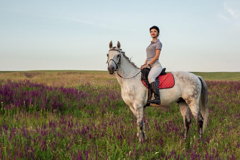 Horsewoman jockey in uniform riding horse outdoors. Sunset. Horseback Riding. Competition. Hobby royalty free stock photography