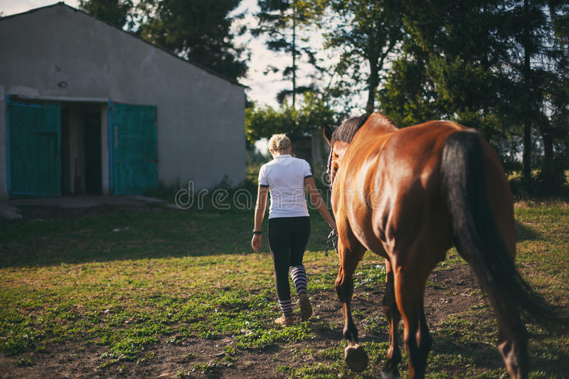Horsewoman jockey in uniform standing with horse. Outdoors royalty free stock photo