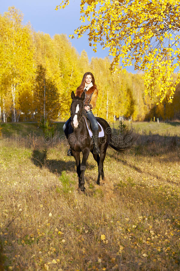 Download Horsewoman stock image. Image of color, fall, girl, birch - 33902685