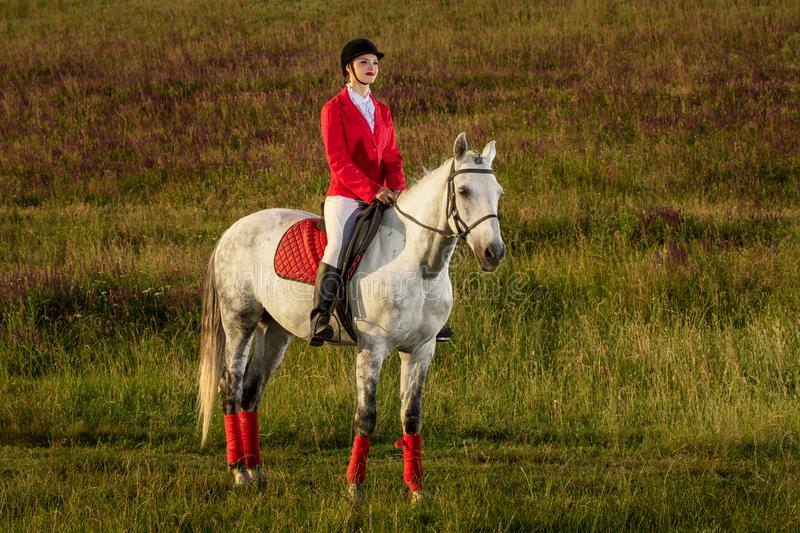 The horsewoman on a red horse. Horse riding. Horse racing. Rider on a horse. The sportswoman on a horse. The horsewoman on a red horse. Equestrianism. Horse stock photo