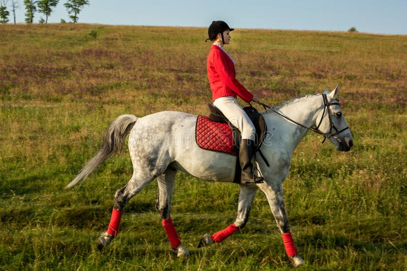 The horsewoman on a red horse. Horse riding. Horse racing. Rider on a horse. The sportswoman on a horse. The horsewoman on a red horse. Equestrianism. Horse royalty free stock photography