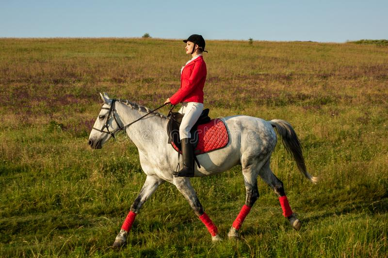 The horsewoman on a red horse. Horse riding. Horse racing. Rider on a horse. The sportswoman on a horse. The horsewoman on a red horse. Equestrianism. Horse stock photography