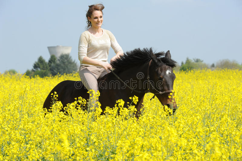Horsewoman. Rider on horseback in the snow stock photography