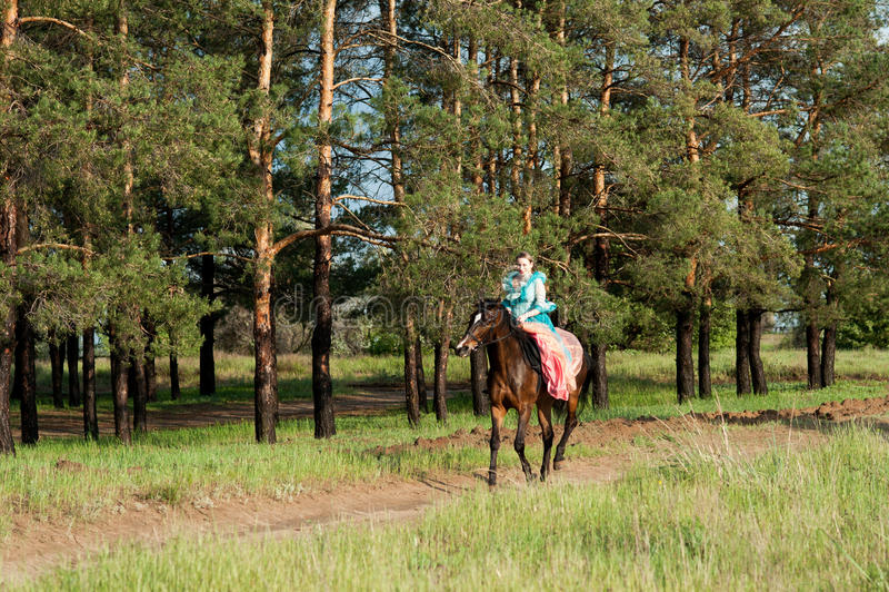Horsewoman riding. royalty free stock photo