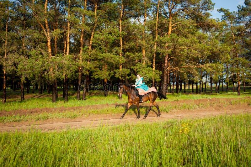 Horsewoman riding. royalty free stock photos