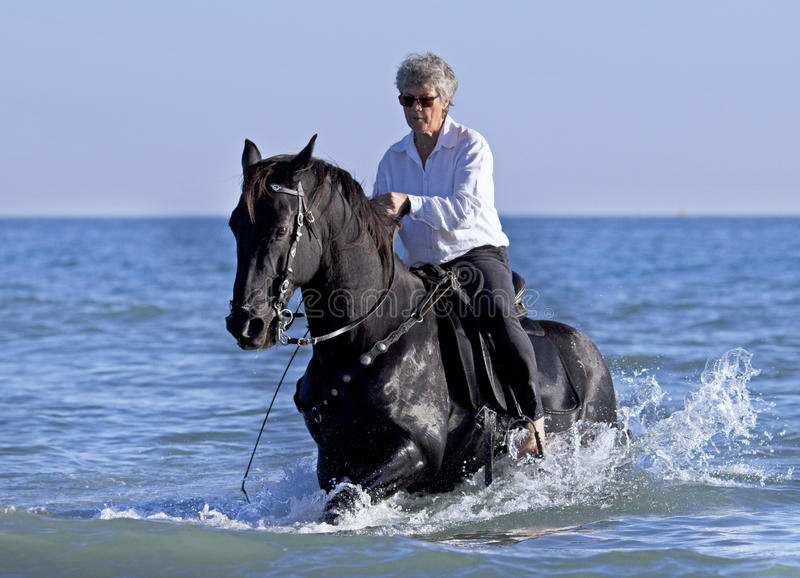 Horsewoman in the sea royalty free stock photography