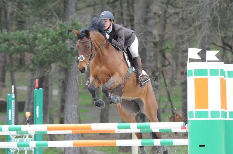 Horsewoman in show jumping. Horsewoman in fontainebleau show jumping stock images