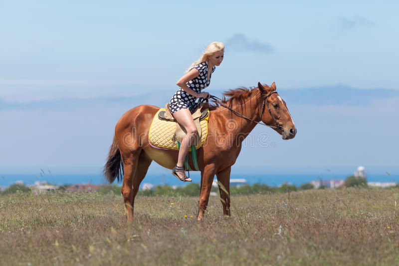Horsewoman. Young blonde woman in polka-dot dress rides on brown gelding royalty free stock image