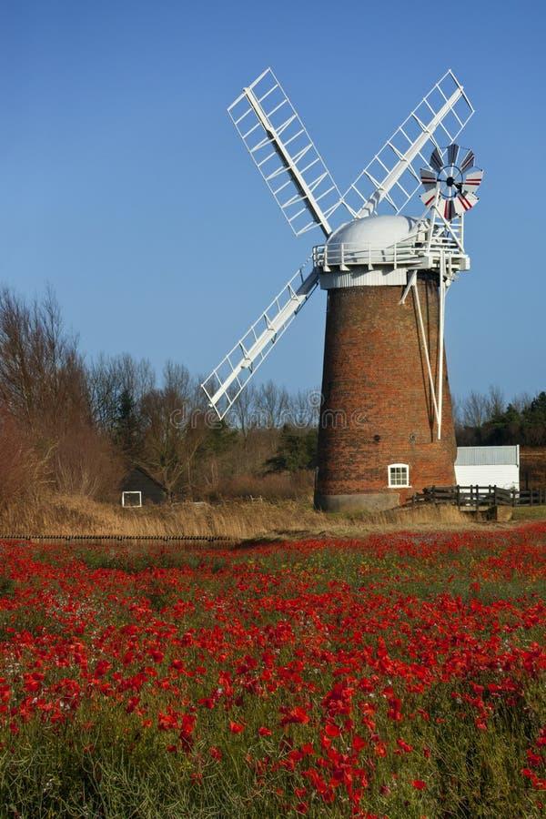 Horsey Windpump - Norfolk - Engeland royalty-vrije stock foto's