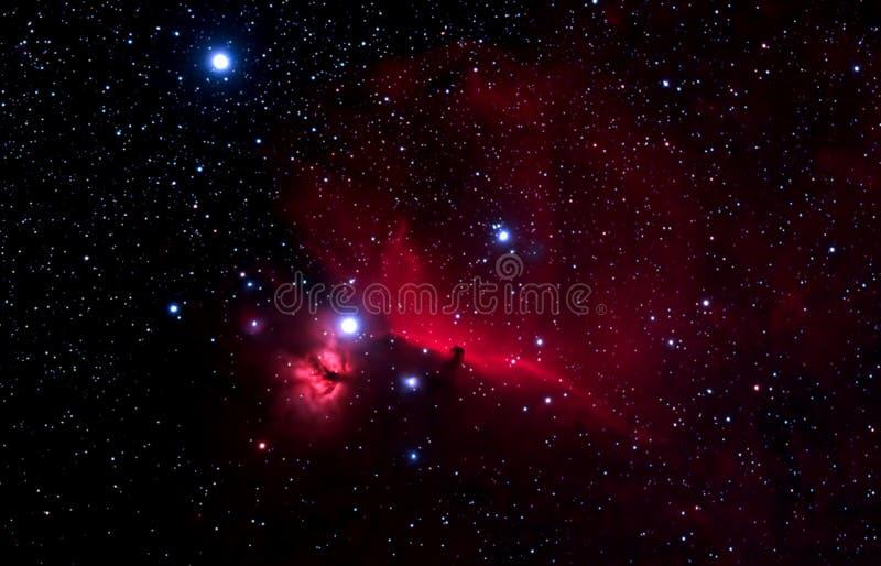 Horshead Nebelfleck lizenzfreie stockbilder