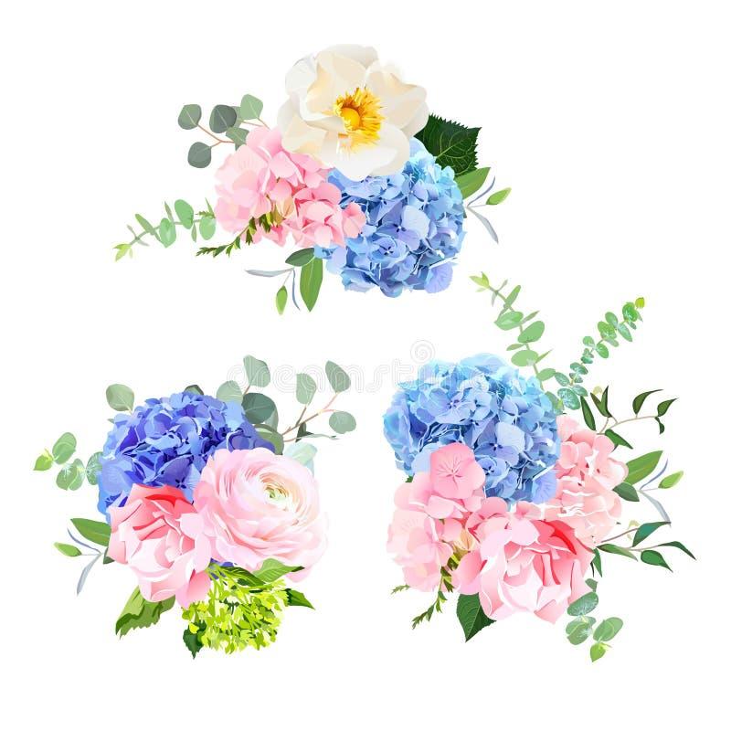 Hortênsia azul, cor-de-rosa, verde e roxa ilustração stock