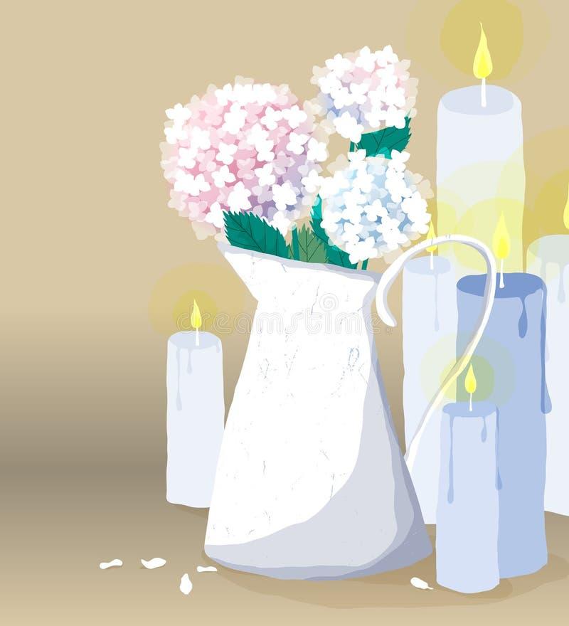 A hortênsia cor-de-rosa e azul floresce o arbusto no vaso e nas velas ilustração stock