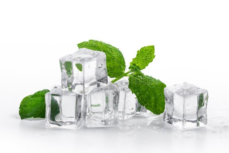 Hortelã fresca e cubos de gelo no fundo branco imagem de stock