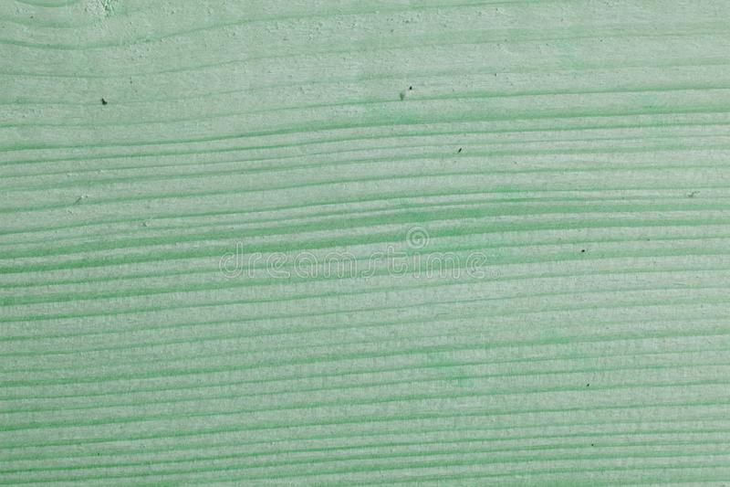 A hortelã verde pintou a textura e o fundo de madeira da placa Fundo de madeira natural da hortelã verde Teste padrão de madeira  fotografia de stock