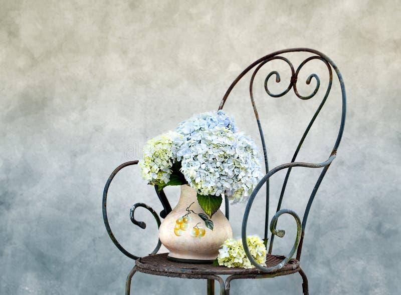 hortensia λουλουδιών στοκ φωτογραφίες