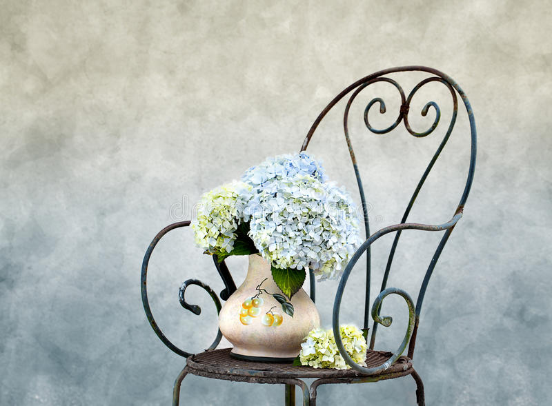 Hortensia Flowers. Still Life photo with Hortensia Flowers on rusty Chair stock photos